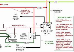 89 Gt Fuel Pump Relay And Ecm Confusion
