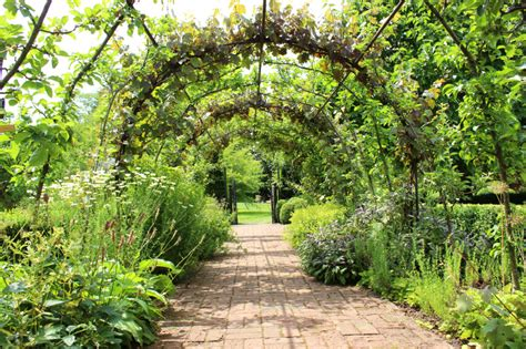 How to use garden plant tie staple gun & trellis netting. 27 Garden Trellis and Lattice Ideas (Wood & Metal)