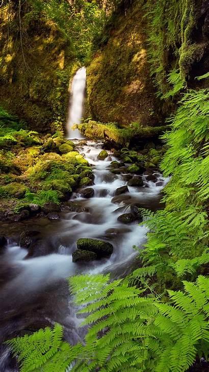 Vertical Landscape Creeks Wallhere Px Wallpapers Wallhaven