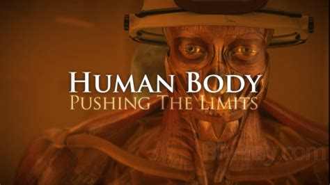 Discovery Channel  Human Body  Pushing The Limits (complete Series)  4 Episodes Avaxhome