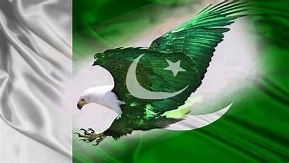 Flag Pakistani Wallpapers Eagle Desktop