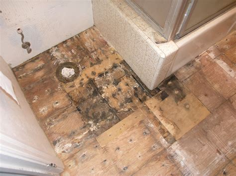 removing ceramic tile from plywood subfloor thefloors co