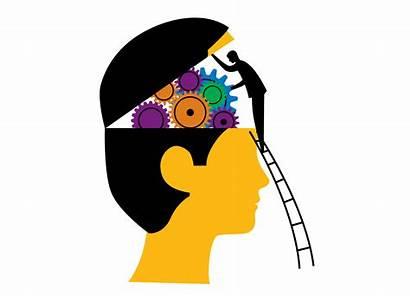 Brain Understanding Health Adult Pathway Relevant Programming