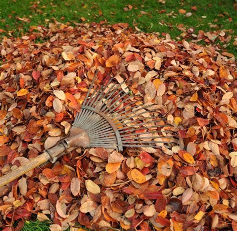 Herbst Gartenarbeit by Gartenarbeit Im Herbst Gartenarbeit Im Herbst