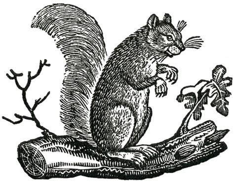 Free Fall Clip Art  Primitive Squirrels  The Graphics Fairy