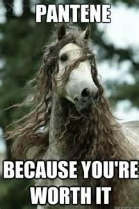 Pantene Because You 39 Re Worth It Pantene Horse Quickmeme