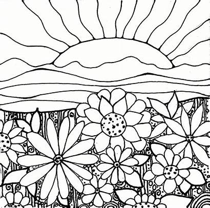 Coloring Sunset Pages Adult Flower Sunrise Flowers