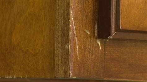 How to Repair Marks on Wood Cabinet Doors   Wooden Kitchen