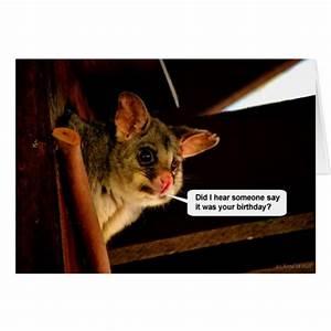Happy Birthday Possum cute Birthday card Opossum | Zazzle