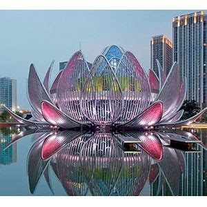 giant lotus flower  finalists   victorian