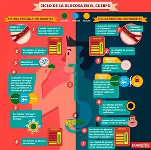 ¿Cuál es la importancia de la glucosa? Diabetes, bienestar y salud