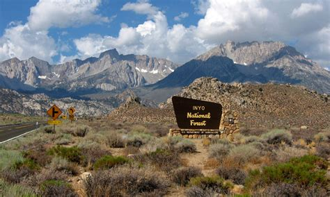 special rules   inyo national forest western land