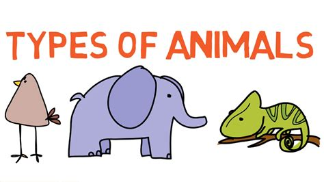 Types Of Animals For Kids