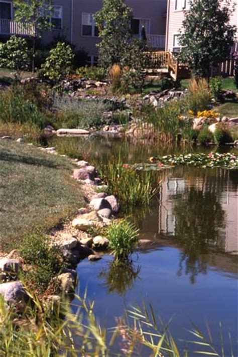 ornamental  retention ponds bridging  gap