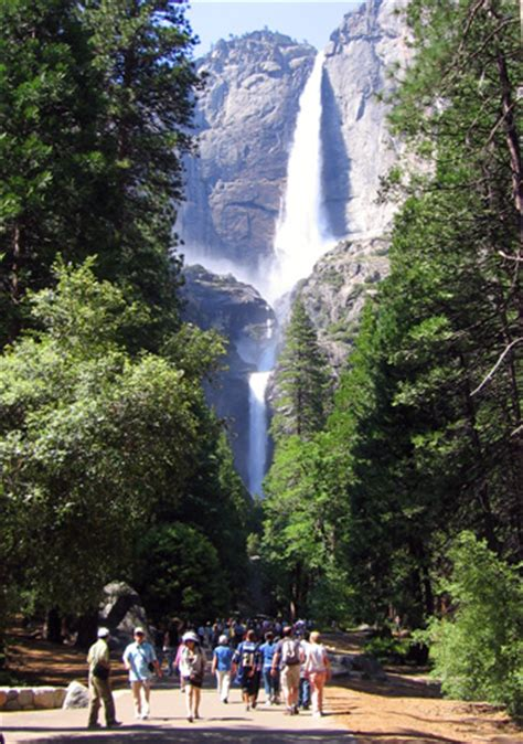 Lower Yosemite Fall Trail National Park