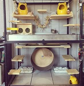 Chinchilla Cage Set-up By Candice #chinchillacage Ins ...