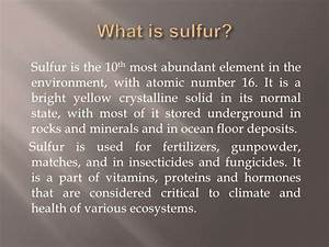 Of The Sulfur Cycle