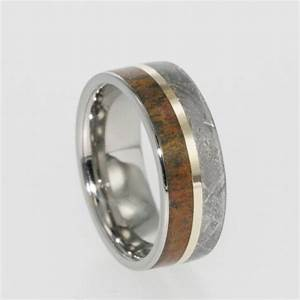meteorite and dinosaur bone ring wedding band or With dinosaur wedding ring