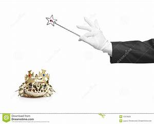 Magician Holding A Magic Wand And A Frog Royalty Free ...