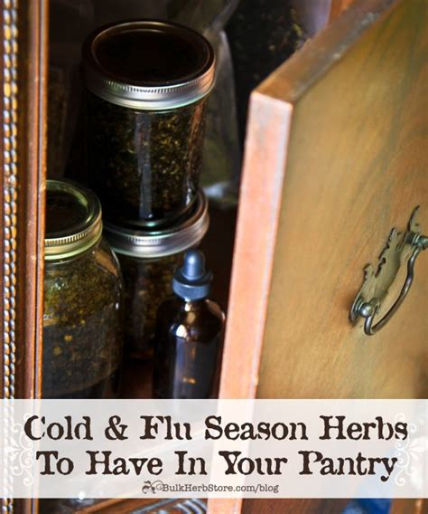 Magical Herbs and What They Do