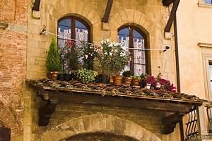 Mediterrane Gärten Bilder : mediterrane k belpflanzen holen sie sich den sommer nach hause ~ Orissabook.com Haus und Dekorationen