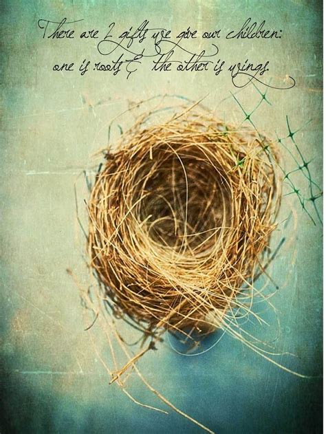 image result  quotes  birds leaving  nest nest