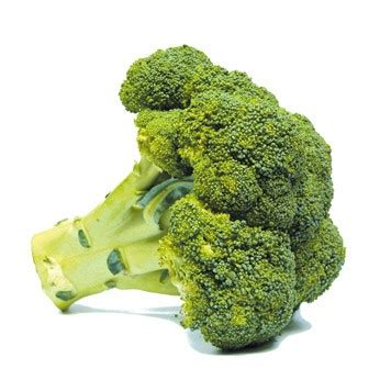 recette de cuisine facile et rapide pour le soir le brocoli préparer cuire associer cuisiner