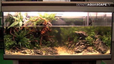 jbl biotope aquarium contest   place nicolay