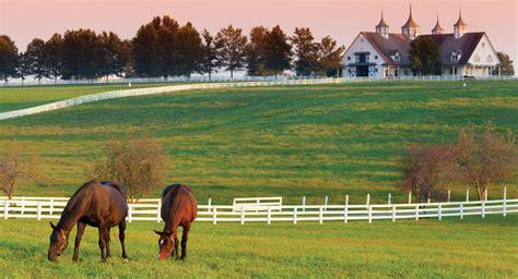 horse farm kentucky devil deal farms horses ranch ky industry