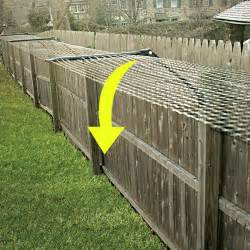 cat fence kit for adapting existing fences 100ft
