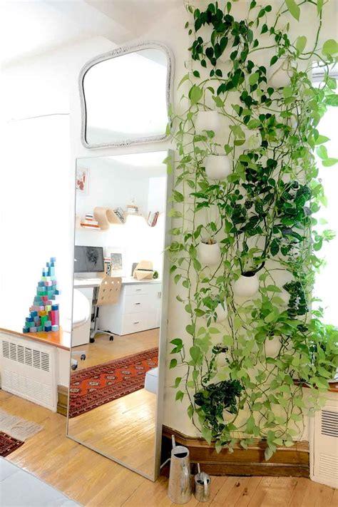 Pflanzen Für Innen by An Artful Home Above A Bookstore Zimmerpflanzen