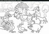 Coloring Farm Pages Pdf Animal Stream Drawing Anatomy Scene Animals Easy Human Printable Getcolorings Very Getdrawings sketch template