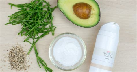 recette masque capillaire cheveux secs 3 point 3