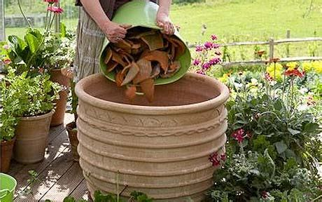 Container Gardening How To Plant Up Pots Telegraph