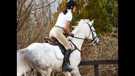 riding tights dublin