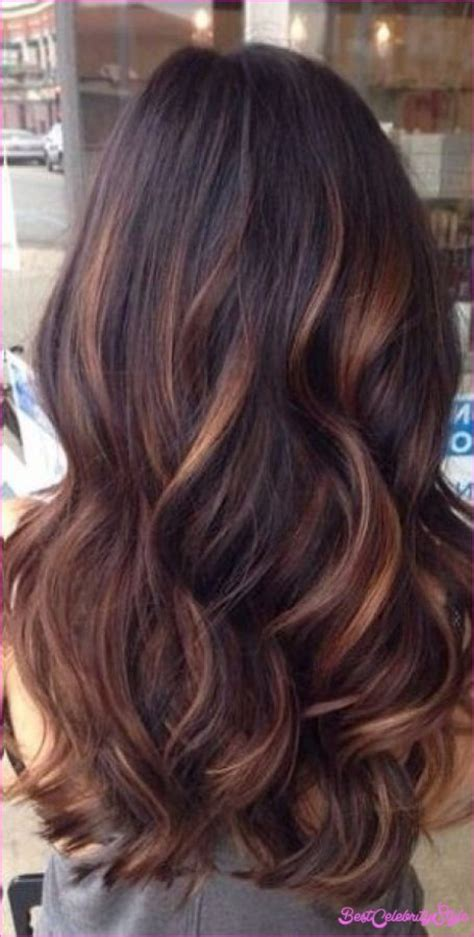 black hair  highlights  lowlights