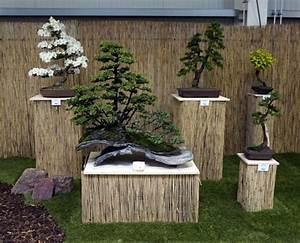 Bonsai Garten Hamburg : bonsaifreunde mittelsachsen e v auf der landesgartenschau ~ Lizthompson.info Haus und Dekorationen