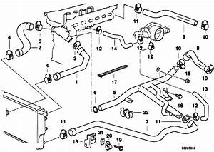 Original Parts For E39 528i M52 Sedan    Engine   Cooling System Water Hoses