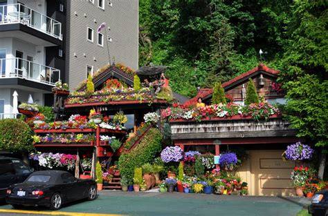 panoramio photo of fancy garden house in west seattle