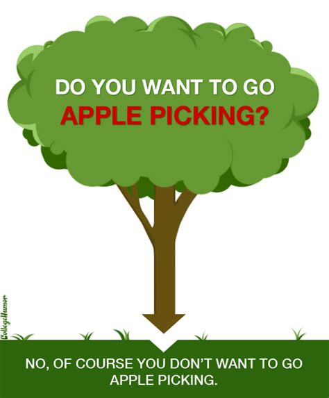 where to go for apple picking should you go apple picking flowchart collegehumor post