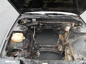 Nissan  240sx  Nissan Sentra  Nissan Sentra Se