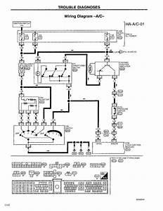 30 Fresh Maxxima Strobe Light Wiring Diagram