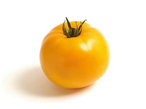 plante de cuisine tomate jaune allegrow