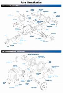 Differential Exploded Views - Parts Identification