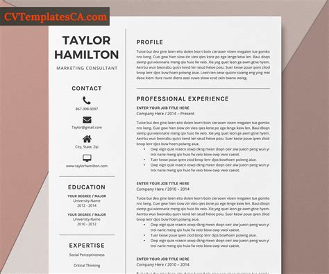 One of the most important first steps in applying to a residency program is the creation of your curriculum vitae. Professional CV Template for Microsoft Word, Curriculum ...