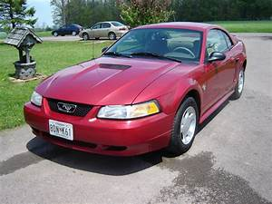 Rougemustang999 1999 Ford Mustang Specs  Photos