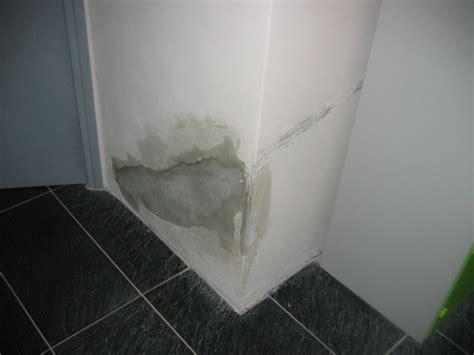 traitement moisissure mur cdaf votre traitement anti
