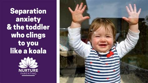 separation anxiety and toddlers 4 | FB TW Separation anxiety and the toddler who clings to you like a koala