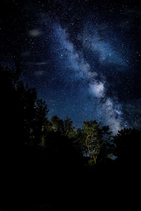 Free Images Landscape Tree Nature Sky Night Star