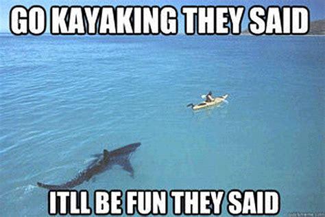 Shark Memes - here come the shark week memes
